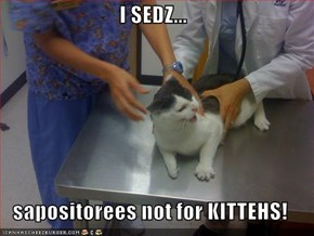I SEDZ...  sapositorees not for KITTEHS!