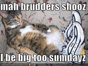 mah brudders shooz  I be big too sumdayz