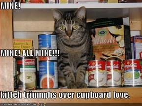 MINE! MINE! ALL MINE!!! kitteh triumphs over cupboard love.