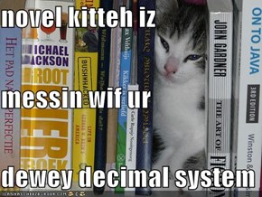 novel kitteh iz messin wif ur dewey decimal system