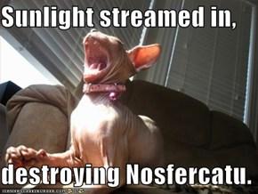 Sunlight streamed in,  destroying Nosfercatu.