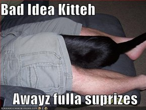 Bad Idea Kitteh  Awayz fulla suprizes