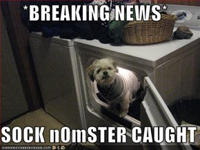 *BREAKING NEWS*  SOCK n0mSTER CAUGHT