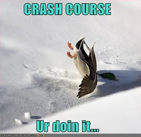 CRASH COURSE  Ur doin it...