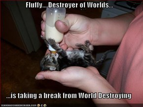 Fluffy... Destroyer of Worlds...  ...is taking a break from World Destroying