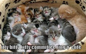 itty bitty kitty committee ring o' cute