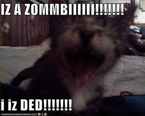 IZ A ZOMMBIIIIII!!!!!!!                                                    i iz DED!!!!!!!
