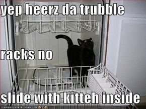 yep heerz da trubble racks no slide with kitteh inside