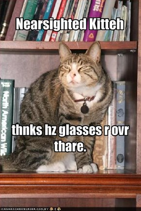 Nearsighted Kitteh