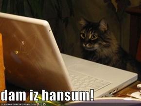 dam iz hansum!