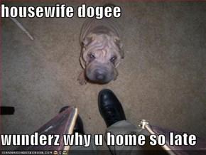 housewife dogee  wunderz why u home so late