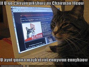 If U go carryin pikshurz uv Chairman Meow  U aynt gonna mayk it wif ennywun ennyhaow