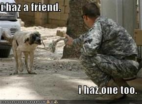 i haz a friend.  i haz one too.