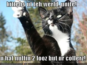 kittehs uf teh werld, unite!  u haf nuffin 2 looz but ur collerz!