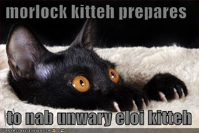 morlock kitteh prepares     to nab unwary eloi kitteh