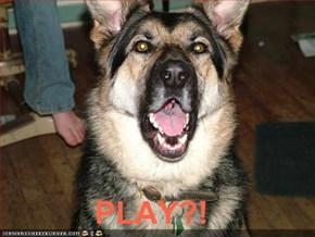 PLAY?!