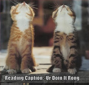Reading Caption:  Ur Doin It Rong.