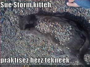 Sue Storm kitteh  praktisez herz tekneek...