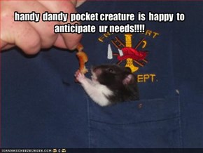 handy  dandy  pocket creature  is  happy  to  anticipate  ur needs!!!!