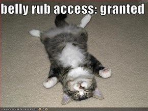 belly rub access: granted