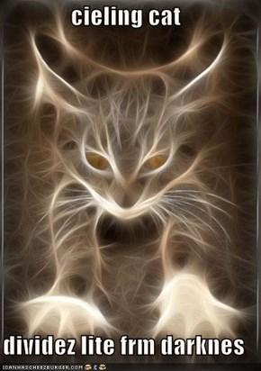 cieling cat  dividez lite frm darknes