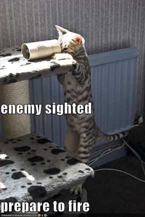 enemy sighted prepare to fire