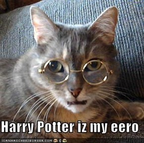 Harry Potter iz my eero