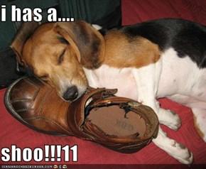 i has a....  shoo!!!11