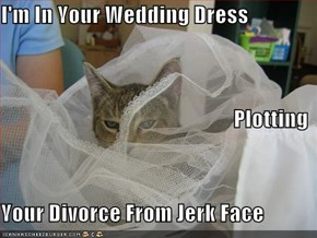 I'm In Your Wedding Dress Plotting  Your Divorce From Jerk Face