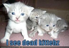I see dead kittehz