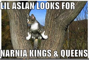 LIL ASLAN LOOKS FOR  NARNIA KINGS & QUEENS