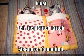 Meet Teh Itteh Bitteh Kitteh Sleepover Commiteh