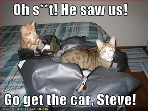Oh s**t! He saw us!  Go get the car, Steve!