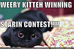 WEERY KITTEH WINNING STARIN CONTEST!!!!