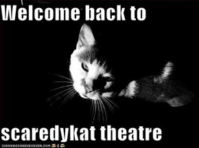 Welcome back to  scaredykat theatre