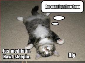 Jus  meditatin. Nawt  sleepin.