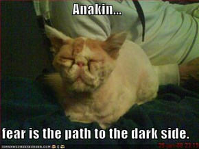 Anakin...  fear is the path to the dark side.