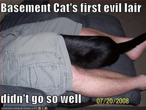 Basement Cat's first evil lair  didn't go so well
