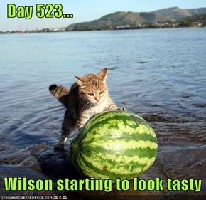 Day 523...   Wilson starting to look tasty