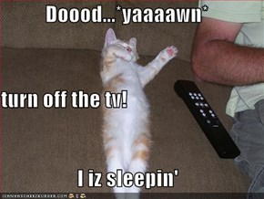 Doood...*yaaaawn* turn off the tv! I iz sleepin'