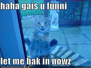 haha gais u funni  let me bak in nowz