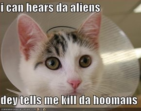 i can hears da aliens  dey tells me kill da hoomans