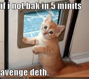 if i not bak in 5 minits  avenge deth.