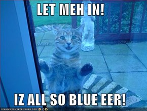 LET MEH IN!  IZ ALL SO BLUE EER!