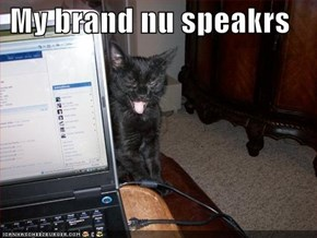 My brand nu speakrs