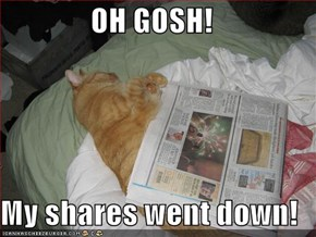 OH GOSH!  My shares went down!