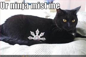 Ur ninja mist me