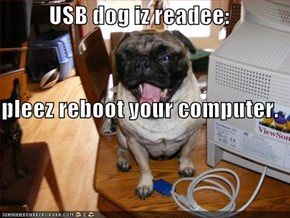 USB dog iz readee:  pleez reboot your computer.