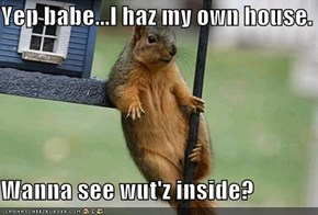 Yep babe...I haz my own house.  Wanna see wut'z inside?
