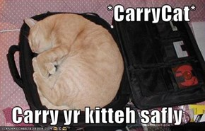 *CarryCat*  Carry yr kitteh safly